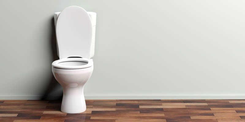 Article Image for Your Toilet Won't Flush ? Here are 4 Ways to Fix It!