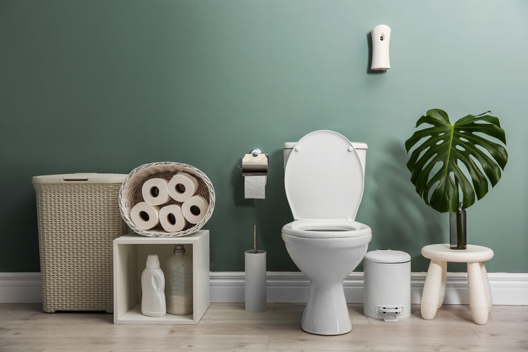 Article Image for Blocked Toilet? How To Unblock Your Loo Without A Plunger